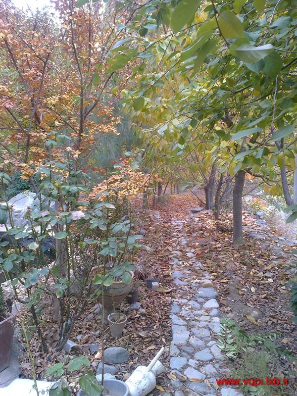 عکسهای غروب پاییزی